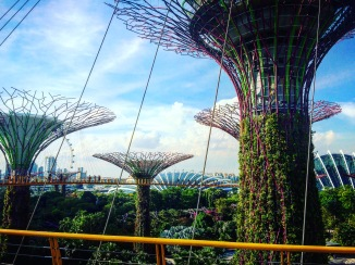 Singapore and Iphone 980