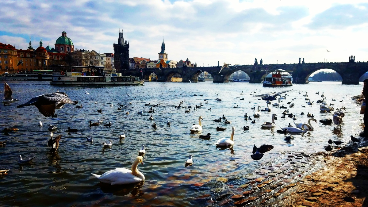 18 Things You Must Do In Prague