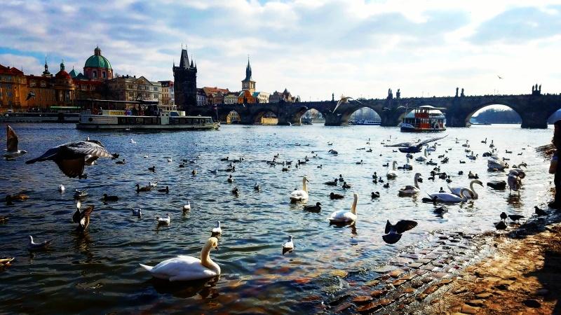 Prague 167 - Copy