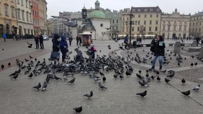 Prague-Krakow 060