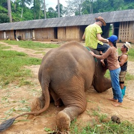 Thailand 320