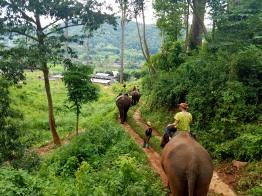 Thailand 355
