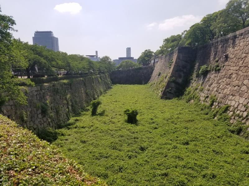 japan 163