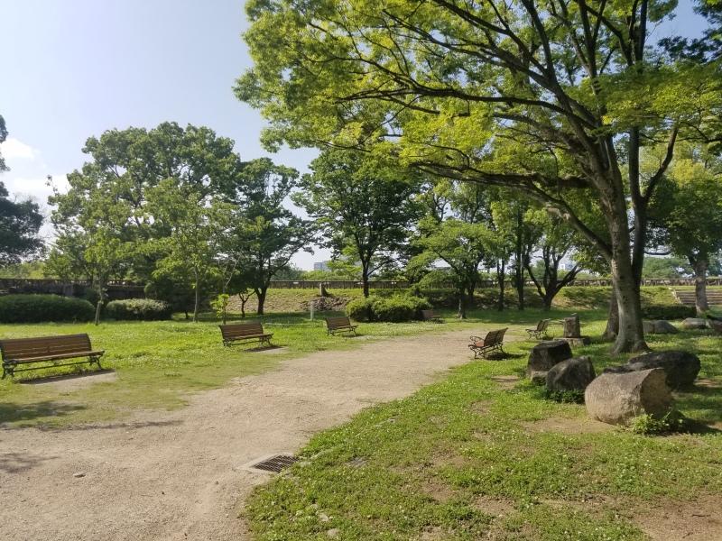 japan 206